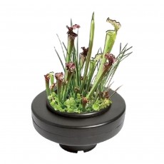 SuperFish Floating Plant Basket